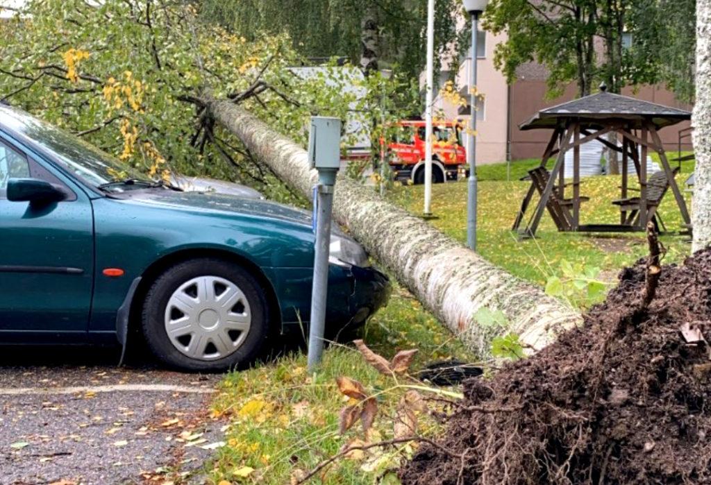 Puu kaatunut myrskyssä auton päälle.